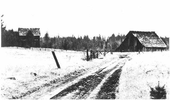 bush_farm_1967