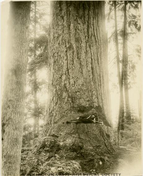 Curtis selfie 1910
