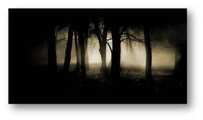 Primeval forest