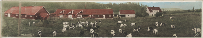1932 tinted Fox Dairy