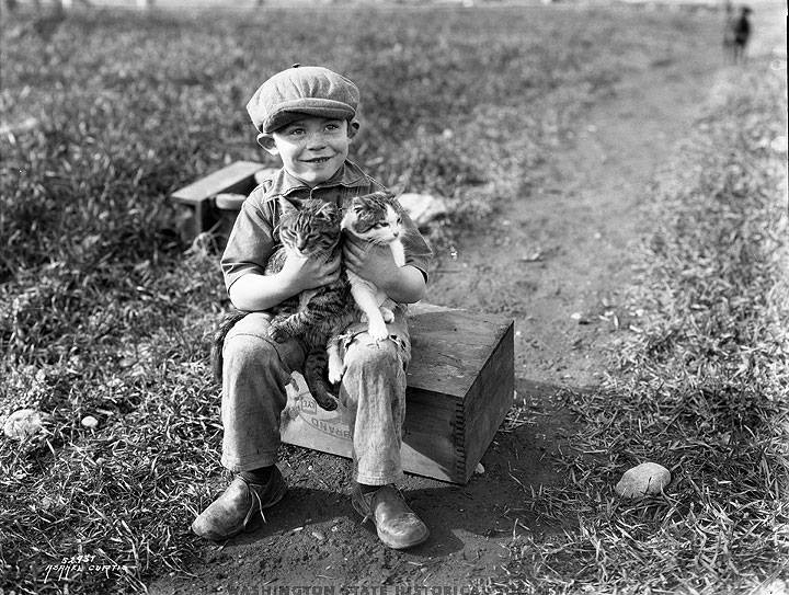 boy & cats