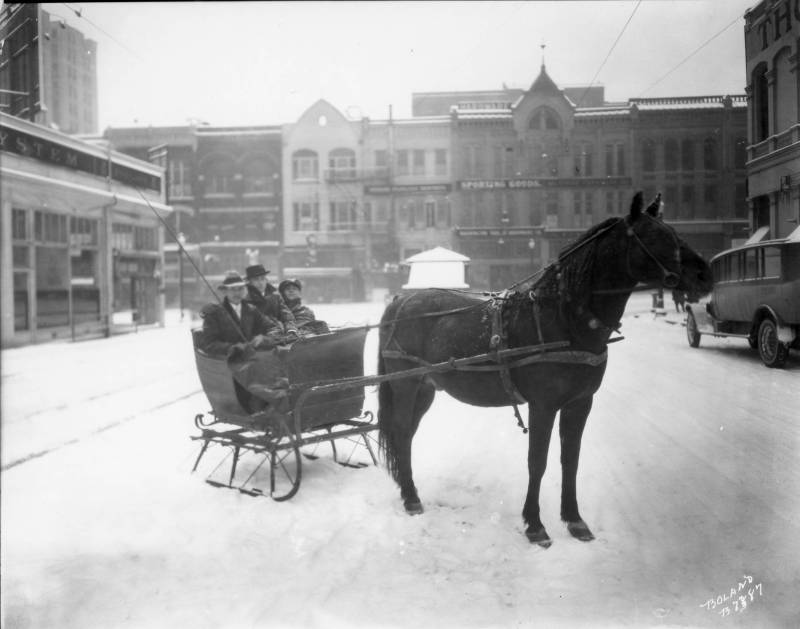 Sled.Marvin_D_Boland_Collection_BOLANDB7387