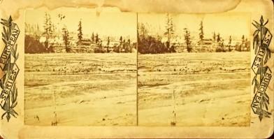 copy of Watkins image